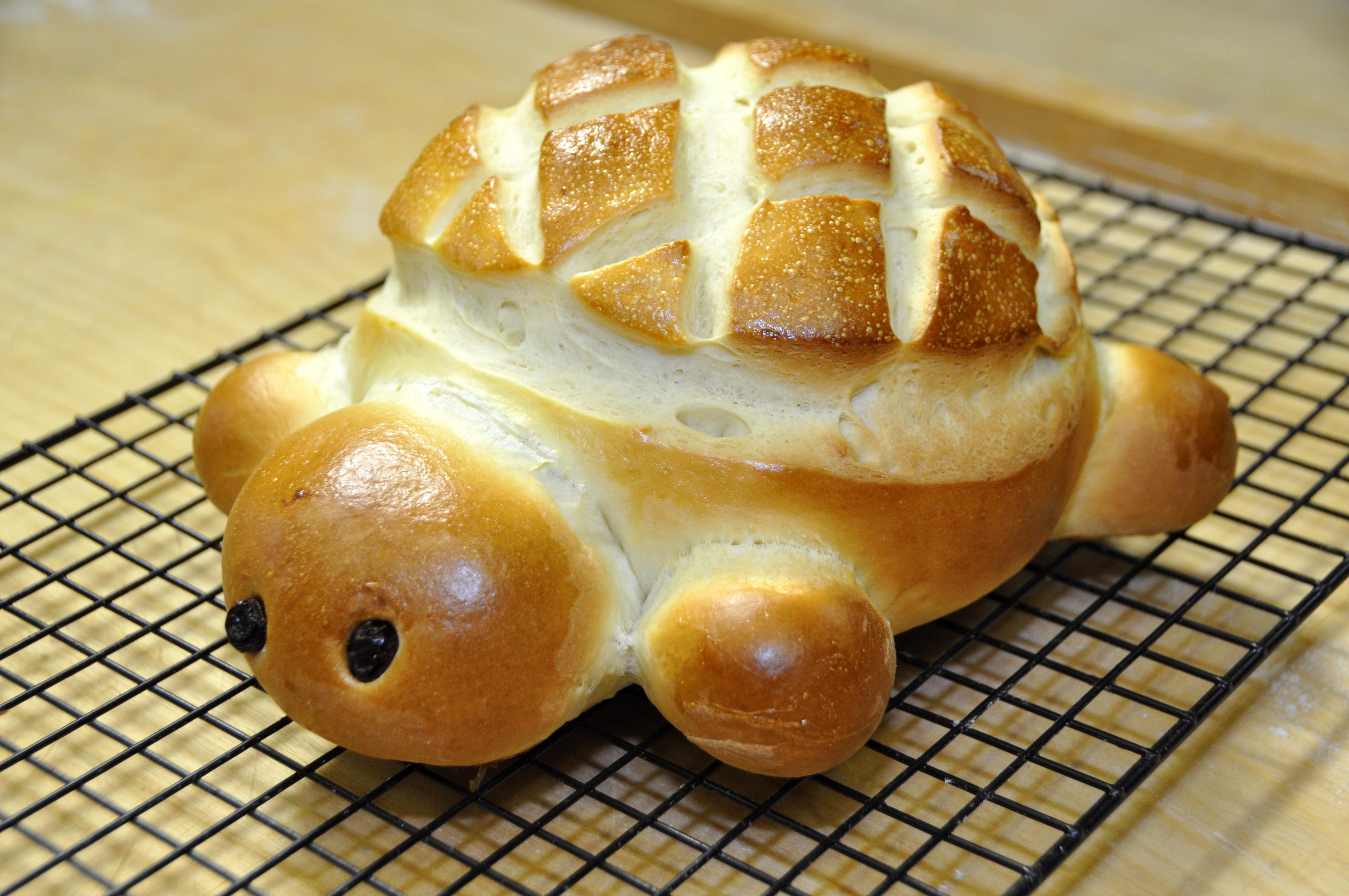 Video ricetta del pane tartaruga le ricette di - Ricette che possono cucinare i bambini ...