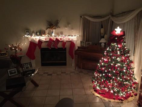 Decorazioni Natale 2015
