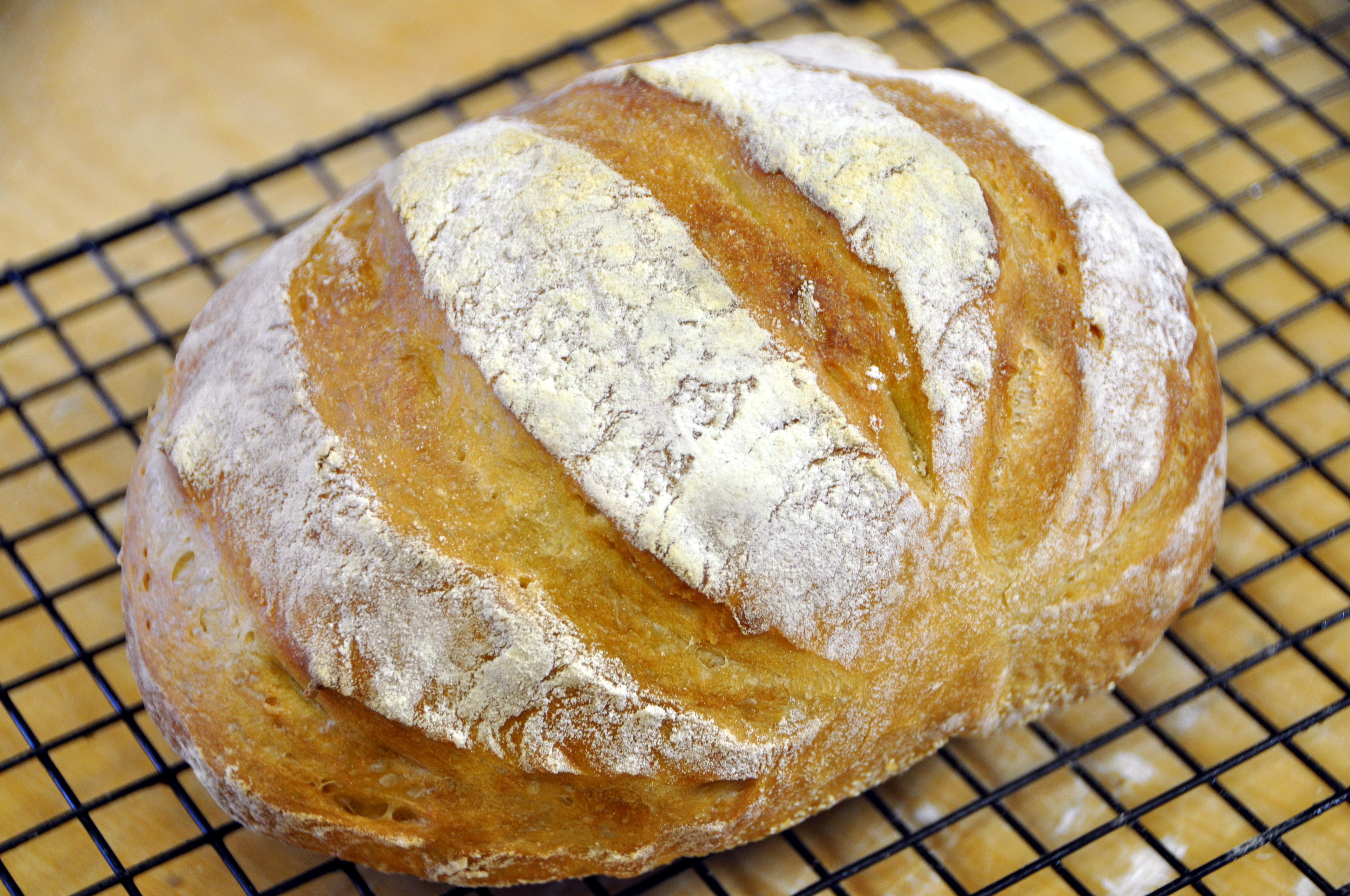 Pane artigianale fatto in casa in 5 minuti vivalafocaccia - Casa umida come risolvere ...