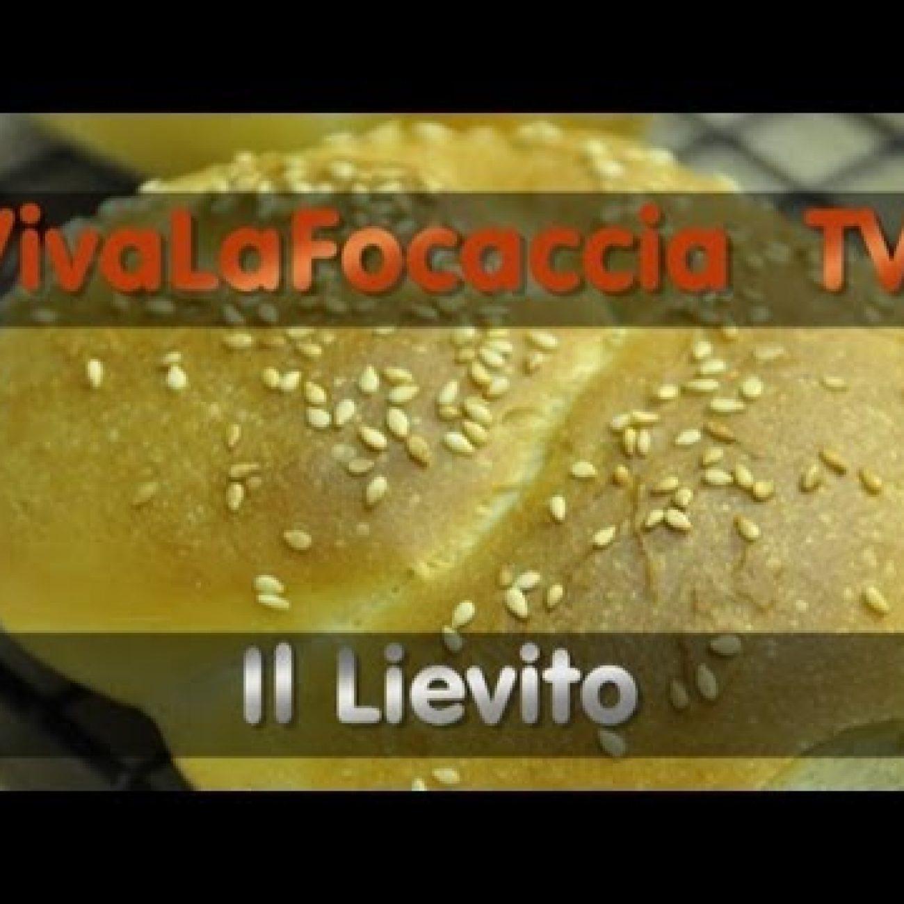 VivaLaFocaccia TV – Puntata 6 – Il Lievito